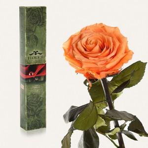 Долгосвежая роза Золотистый Хризоберилл в подарочной упаковке (7 карат короткий стебель)
