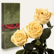 Три долгосвежие розы Желтый Топаз в подарочной упаковке (5 карат короткий стебель)